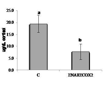 Cortisol basal levels for European sea bass (Dicentrarchus labrax) fed the different dietary treatments